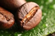 Кофе в зерне