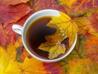 Осенние напитки